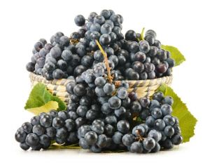 Виноград черный Молдова